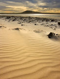 Elephant Bay - Pebble Island - Falkland Islands Stock Photography