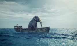 Elephant in a boat at sea. Elephant sitting in a boat by sea. This is a 3d render illustration Royalty Free Stock Images