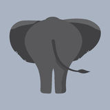 Elephant Bottom. Single Elephant Bottom Vector Illustration Royalty Free Stock Photo