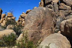 Elephant Boulder. Elephant shaped Boulder in Mojave desert Stock Photo
