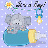 Elephant boy Stock Images