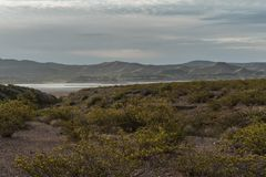 Elephant Butte State Park in New Mexico. Elephant Butte State Park in southern New Mexico provides travelers a desert scenic view stock photography