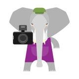 Elephant with camera Royalty Free Stock Photos