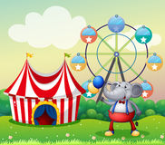 An elephant at the carnival royalty free illustration