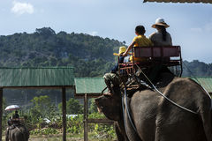 Elephant carrying tourists walking Royalty Free Stock Photo