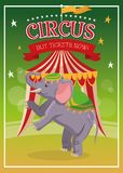 Elephant cartoon of circus. Elephant cartoon icon. Circus carnival and festival theme. Colorful  design. Vector illustration Stock Images