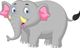 Elephant cartoon. Illustration of Elephant cartoon standing Stock Images
