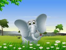 Elephant cartoon with nature background Stock Photos