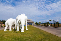 Elephant cement. Somewhere in thailand stock image