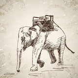 Elephant with chair Stock Photo