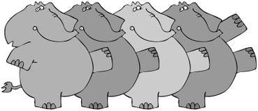 Elephant Chorus Line Royalty Free Stock Image