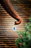 Elephant Christmas Stock Photography