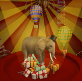 Elephant at the circus with gifts Royalty Free Stock Photo