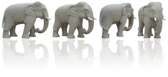 Elephant (Clipping Path) Stock Photos