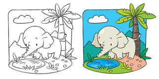 Elephant. Coloring book. Coloring picture of elephant on a green lawn Stock Photos