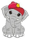 Elephant in cool cap Stock Image