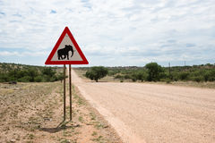Elephant crossing Royalty Free Stock Photos