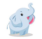 Elephant so cute Stock Photo