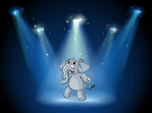 An elephant dancing in the middle of the stage Royalty Free Stock Photos