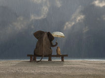 Elephant and dog sit under the rain