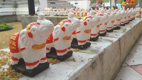 Elephant dolls line Stock Images
