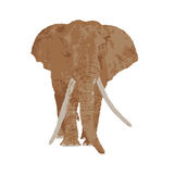 Elephant drawing Stock Photography