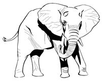 Elephant. The elephant drawing with ink Royalty Free Stock Photography
