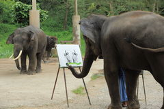An elephant is drawing a picture. Of another elephant stock image