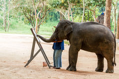 Elephant drawing a picture. On elephants show at northern of Thailand royalty free stock photos