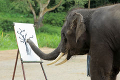 An elephant is drawing a picture stock images