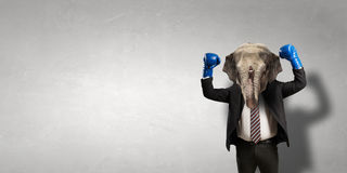 Elephant dressed in business suit . Mixed media Royalty Free Stock Photography
