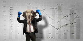 Elephant dressed in business suit . Mixed media royalty free stock images