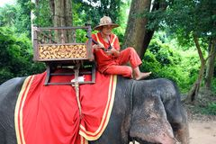 Elephant driver in Angkor Thom, Stock Photos