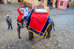 Elephant drivers in Amer village Royalty Free Stock Images