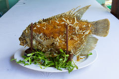 Elephant ear fish grilled and ready to eat. On white royalty free stock image