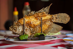 Elephant ear fish. Grilled and ready to eat in the local restaurant at Mekong Delta in south Vietnam Stock Photography