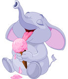 Elephant eating ice cream Stock Images
