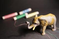 Elephant. Walking on sewing threads color background illustration design pedryj pedro jose pelaez ferreiro animal stock photos