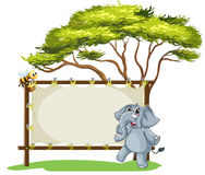 An elephant beside an empty framed signage Stock Photo