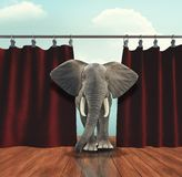 Elephant enters on stage stock image