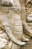 Elephant face stone background Stock Photography