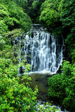 Elephant falls Royalty Free Stock Photography