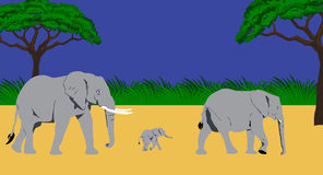 Elephant family. Illustration of an elephant family taking a walk in an african scenery Royalty Free Stock Photo