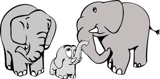 Elephant family. Cartoon style drawn elephant family Royalty Free Stock Images