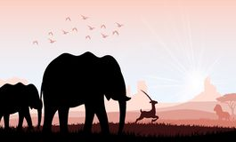 Elephant family with deer and birds. Illustration of Elephant family with deer and birds stock illustration