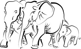 Elephant family Royalty Free Stock Image
