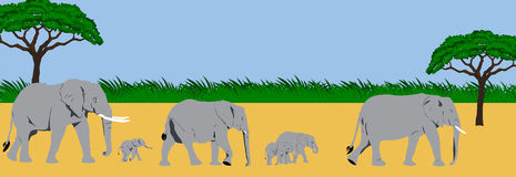 Elephant family panorama. Illustration of an elephant family taking a walk in an african scenery Royalty Free Stock Images