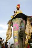Elephant Festival, Jaipur, India Royalty Free Stock Photo