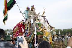 Elephant Festival, Jaipur, Rajasthan, India Stock Image