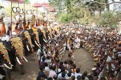 Elephant festival of Thrissur Stock Image